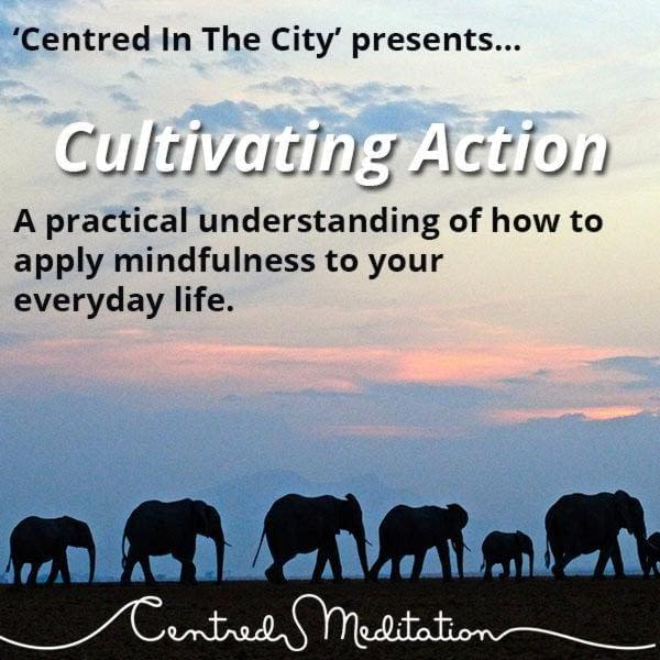 Cultivating Action